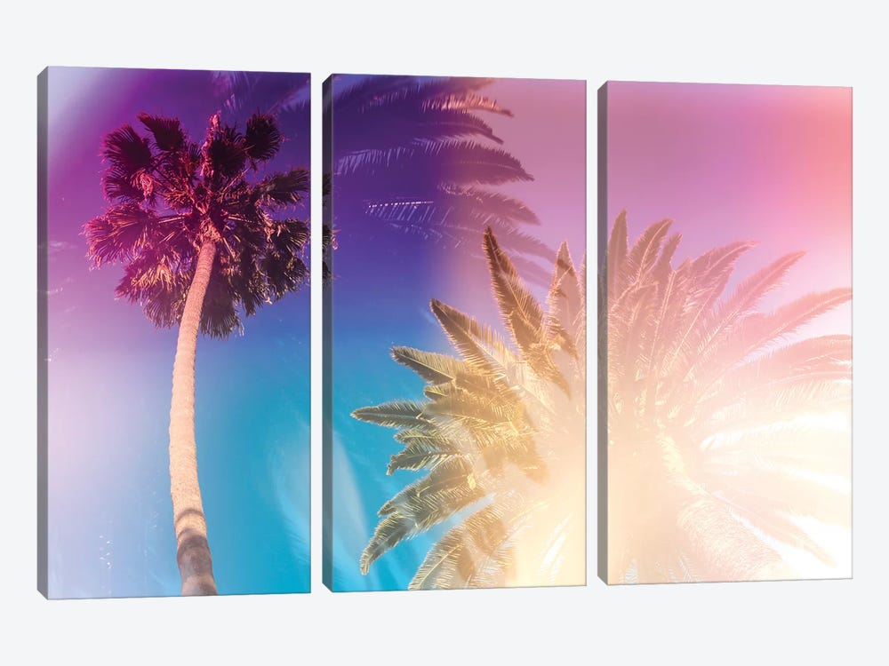 Tropical Palms 3-piece Canvas Wall Art