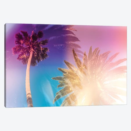 Tropical Palms Canvas Print #EKU99} by Elena Kulikova Canvas Art