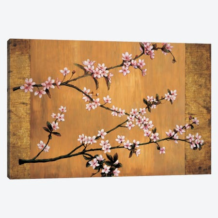 Cherry Blossoms Canvas Print #ELA11} by Erin Lange Canvas Art Print