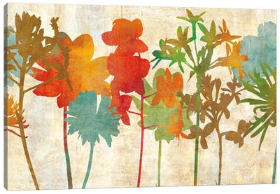Colorful Silhouette Canvas Print #ELA14