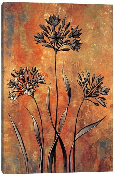 Dreamscape II Canvas Art Print