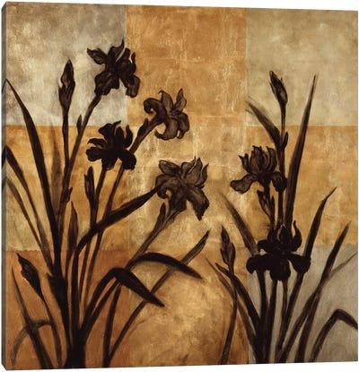 Iris Silhouette I Canvas Art Print