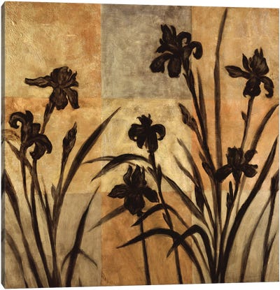 Iris Silhouette II Canvas Art Print