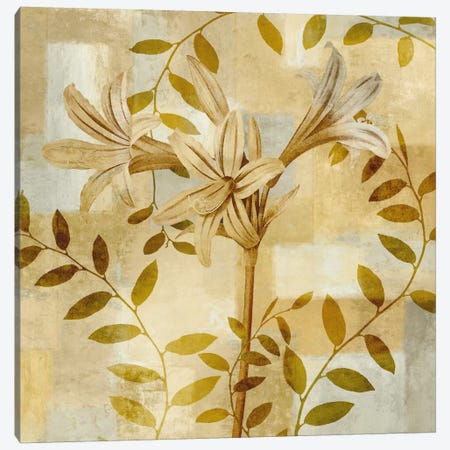 Lily Dreams Canvas Print #ELA47} by Erin Lange Canvas Print