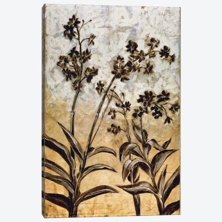 Orchid Silhouette Canvas Print #ELA56} by Erin Lange Canvas Artwork