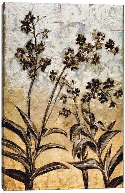 Orchid Silhouette Canvas Art Print
