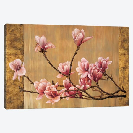 Pink Magnolias Canvas Print #ELA60} by Erin Lange Canvas Wall Art