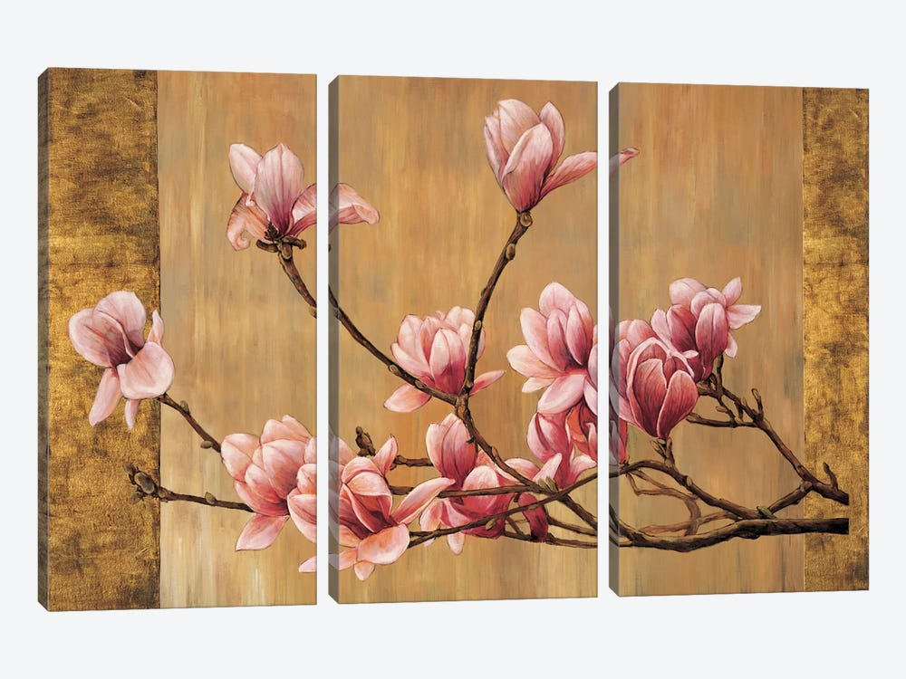 Pink Magnolias by Erin Lange 3-piece Canvas Wall Art