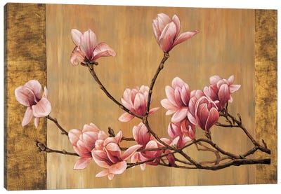Pink Magnolias Canvas Art Print
