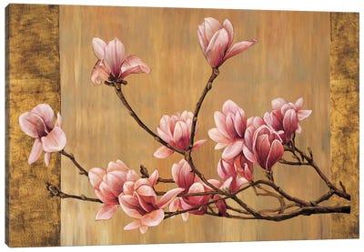 Pink Magnolias Canvas Art Print