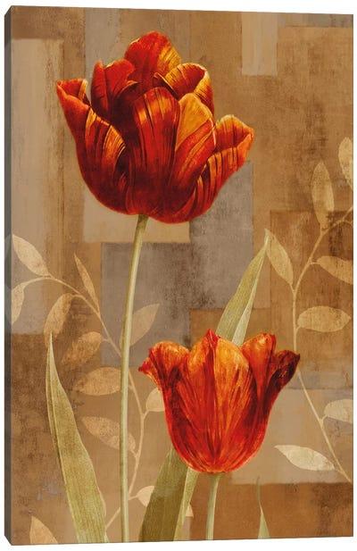 Red Impression II Canvas Art Print