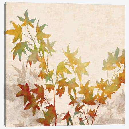 Turning Leaves I Canvas Print #ELA75} by Erin Lange Canvas Art