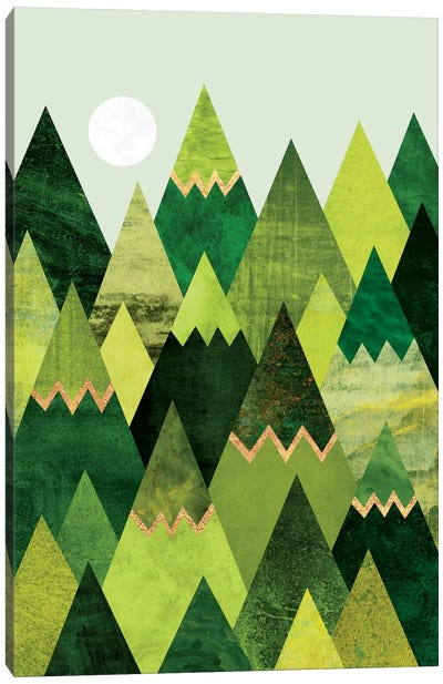 Forest Mountains Canvas Art Print