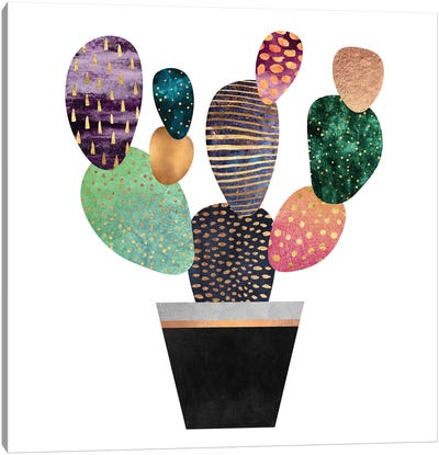 Pretty Cactus Canvas Art Print
