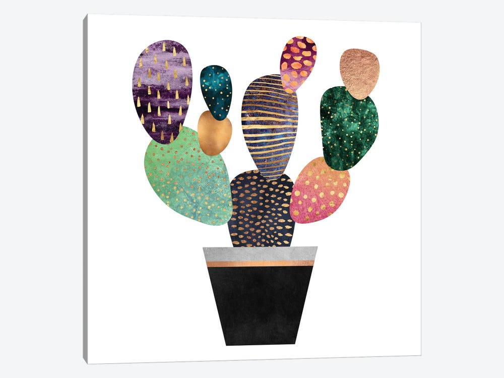 Pretty Cactus by Elisabeth Fredriksson 1-piece Canvas Print
