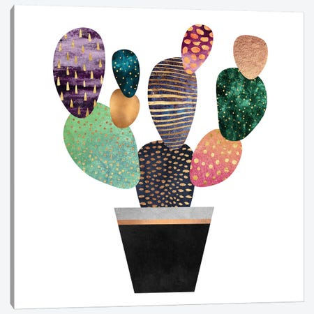 Pretty Cactus Canvas Print #ELF165} by Elisabeth Fredriksson Canvas Art Print