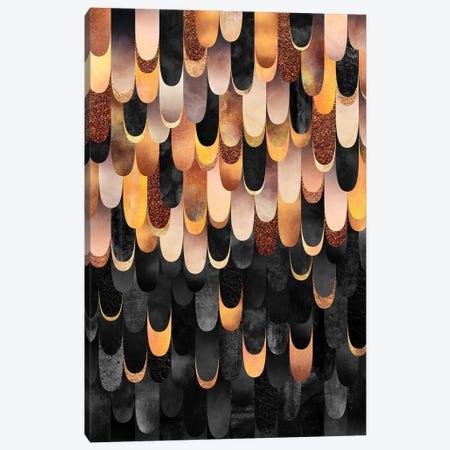 Feathered - Copper & Black Canvas Print #ELF236} by Elisabeth Fredriksson Art Print