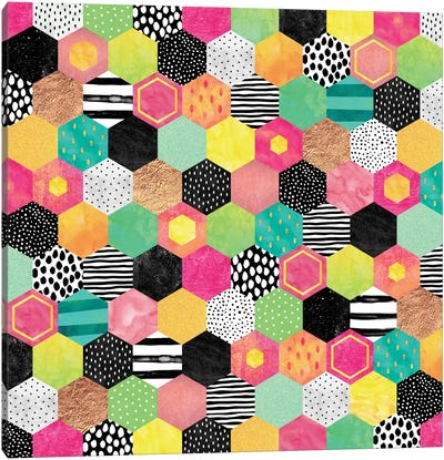 Color Hive Canvas Art Print