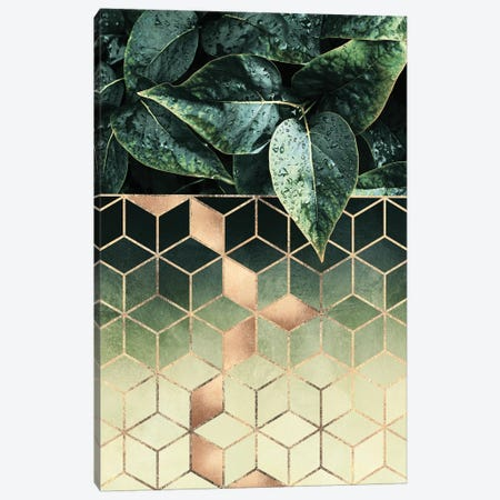 Leaves And Cubes II Canvas Print #ELF241} by Elisabeth Fredriksson Art Print