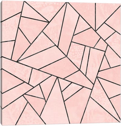 Rose Stone Canvas Art Print