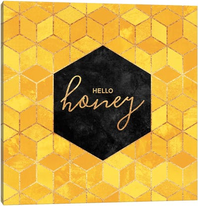 Hello Honey Canvas Art Print