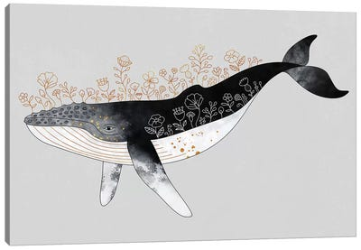 Floral Whale Canvas Art Print