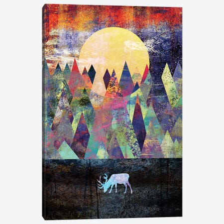 Lappland Canvas Print #ELF63} by Elisabeth Fredriksson Canvas Art Print
