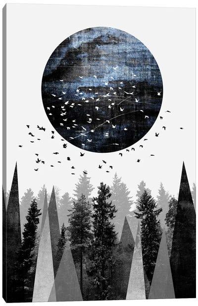 Nature Canvas Art Print