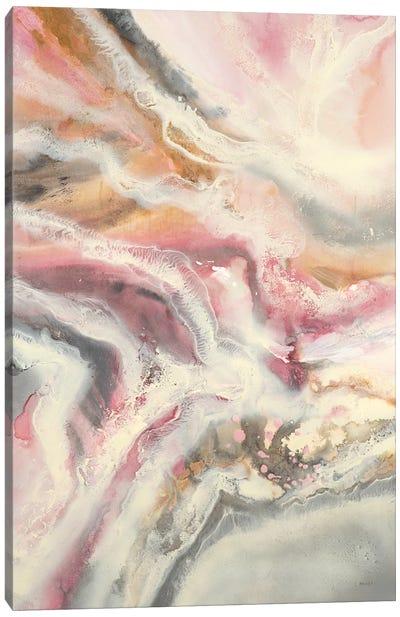 Aerial Visions II Canvas Art Print