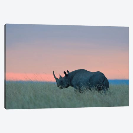 Rhino Sunset Canvas Print #ELM119} by Elmar Weiss Canvas Artwork