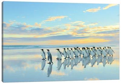 Beach Walk - King Penguins Canvas Art Print