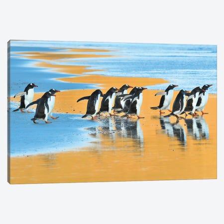 Early Birds Canvas Print #ELM31} by Elmar Weiss Canvas Art Print