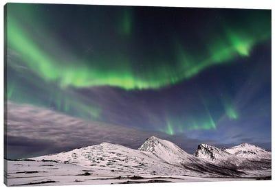 Polar Lights Canvas Art Print