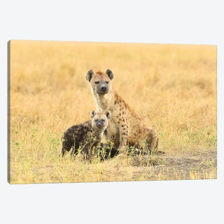Spotted Hyeanas - Mother And Pup Canvas Print #ELM370} by Elmar Weiss Canvas Wall Art