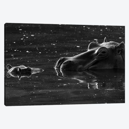Hippo With Baby Canvas Print #ELM57} by Elmar Weiss Canvas Artwork