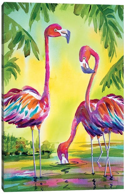 Flamingo Family Canvas Art Print