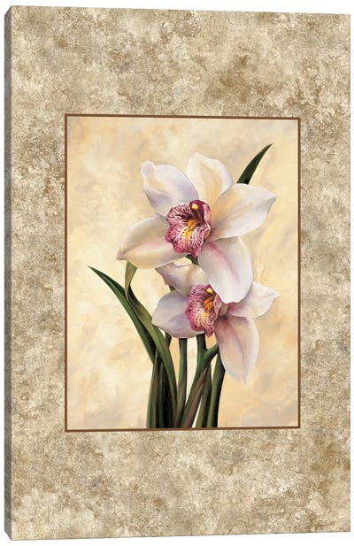 Perfection II Canvas Art Print