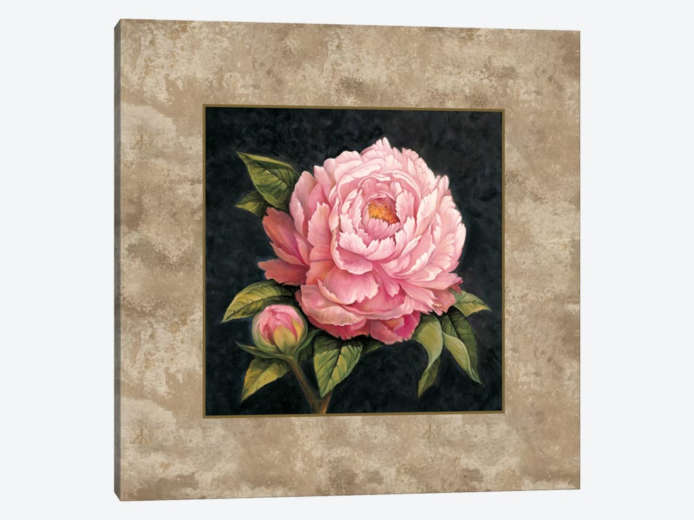 Pink Peony by E. Lopez 1-piece Canvas Art Print