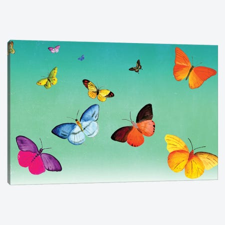 Butterflies Canvas Print #ELW10} by Ellen Weinstein Art Print