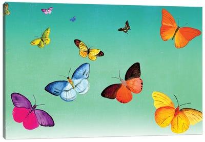 Butterflies Canvas Print #ELW10