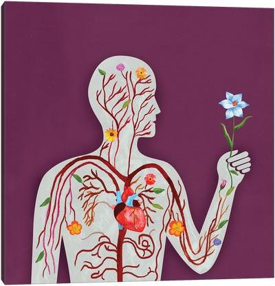 Anatomy Canvas Art Print