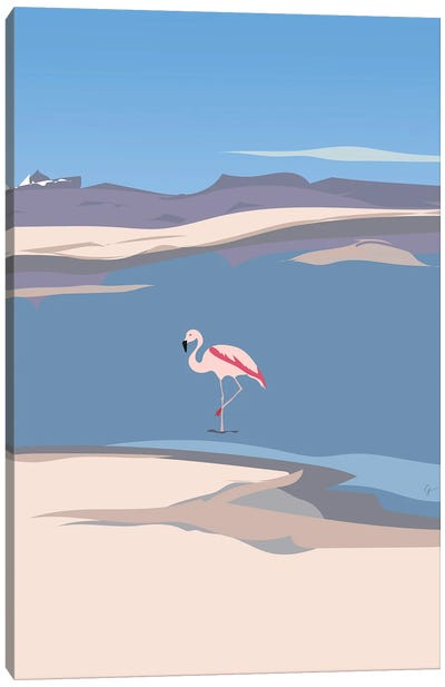 Flamingo In Chile Canvas Art Print
