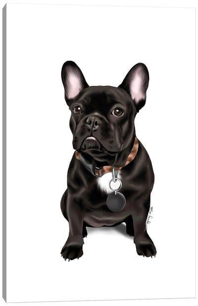 French Bull Dog Canvas Art Print