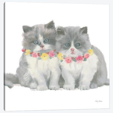 Cutie Kitties VIII Canvas Print #EMA8} by Emily Adams Canvas Print