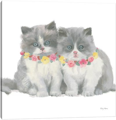 Cutie Kitties VIII Canvas Art Print