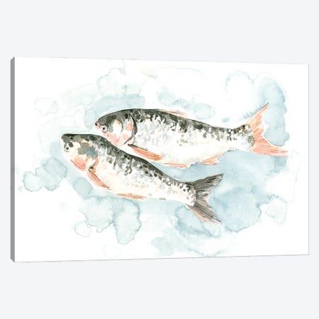 Pisces Pair I Canvas Print #EMC101} by Emma Caroline Canvas Wall Art
