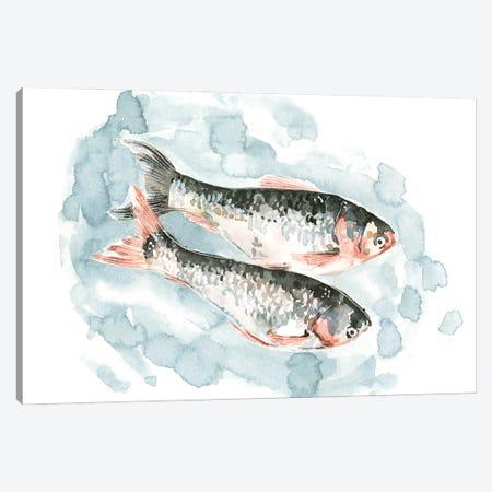 Pisces Pair II Canvas Print #EMC102} by Emma Caroline Canvas Art