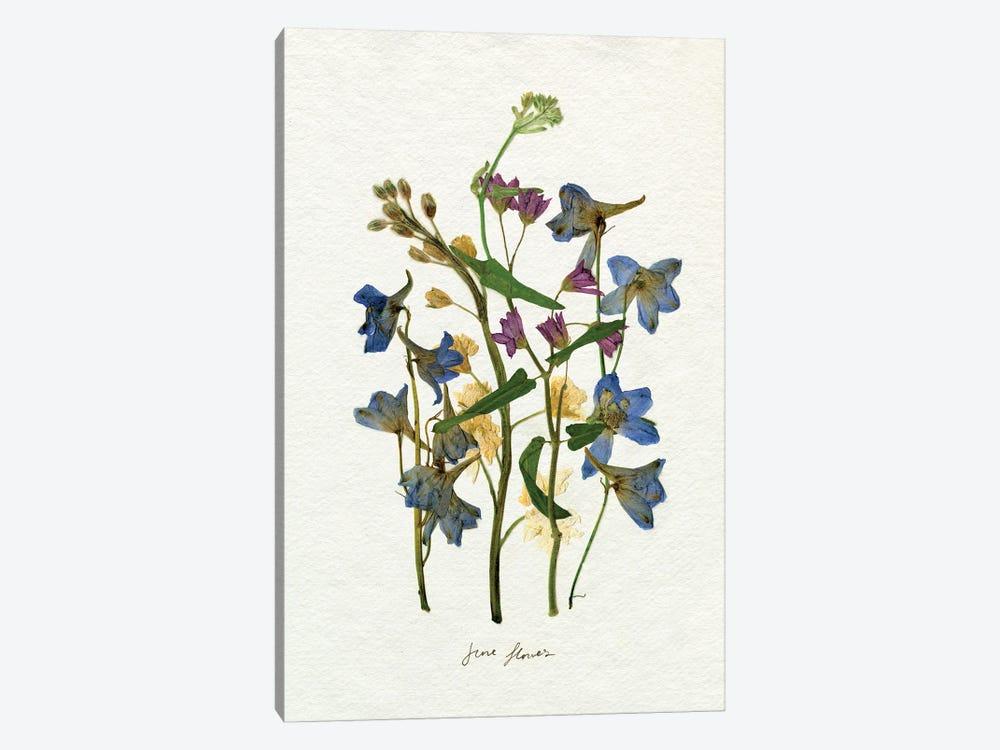 Pressed June Arrangement II by Emma Caroline 1-piece Canvas Art