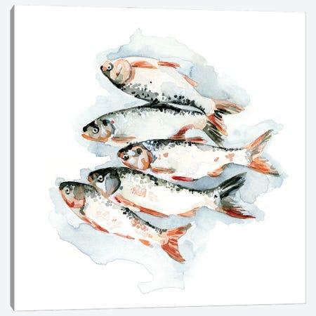 Seafood Snack II Canvas Print #EMC112} by Emma Caroline Art Print