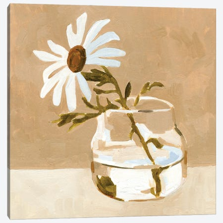 Solitary Daisy I Canvas Print #EMC117} by Emma Caroline Canvas Artwork